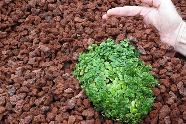 پوکه معدنی در کشاورزی