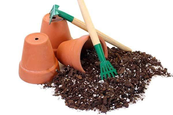 کاربرد پرلیت در کشاورزی و باغداری